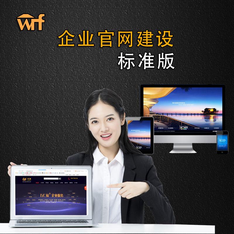 企业官网建站服务 标准版