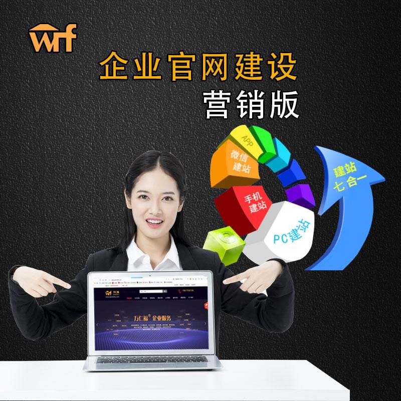 企业官网建站服务 营销版